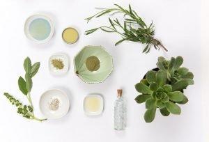plants cosmetics