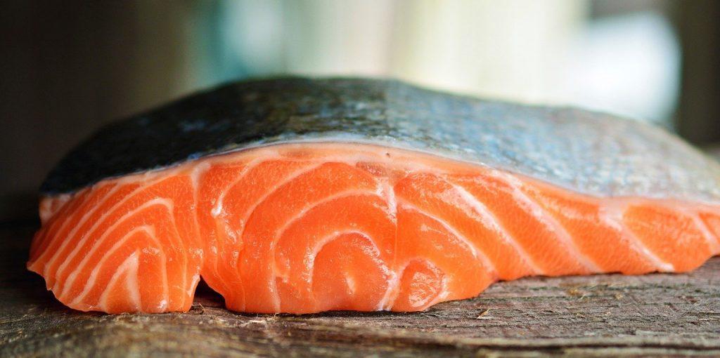 salmon-fish-pink-meat